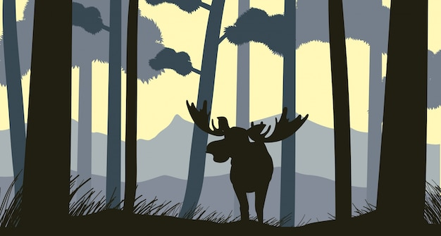 Silhouette scene with moose in forest