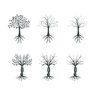 Silhouette of a three in different seasons