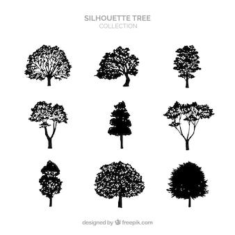 Collezione di alberi silhouette di nove