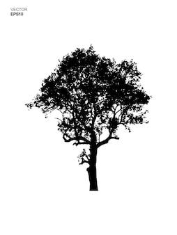 Силуэт дерева, изолированные на белом фоне. идея использования парковых и уличных объектов для ландшафтного дизайна, архитектурного декора. векторная иллюстрация.