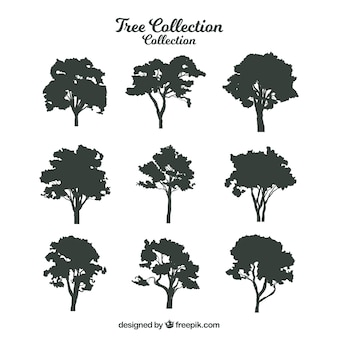 Silhouette of trees with variety of designs