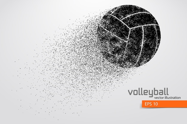 Silhouette of volleyball ball