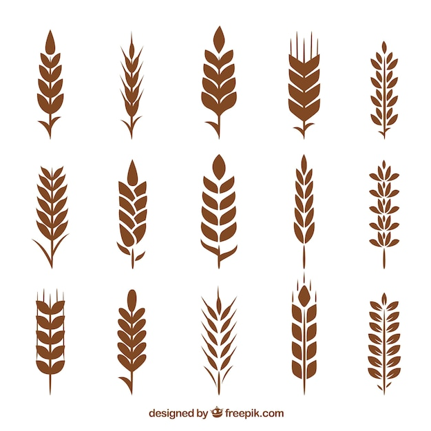 wheat vectors photos and psd files free download rh freepik com wheat vector free wheat vector psd