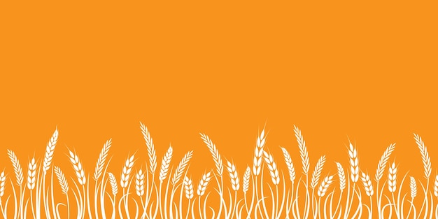 Silhouette of wheat. silhouette. wheat in the field on a white background. Premium Vector