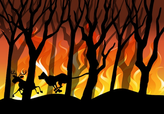 Silhouette wildfire forest background