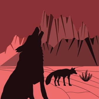 사막에서 실루엣 늑대