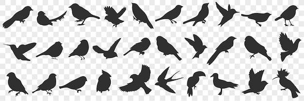 Silhouettes of birds doodle set