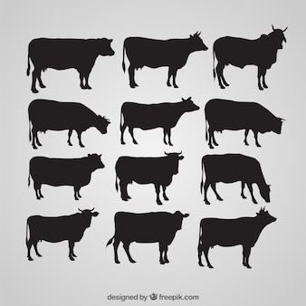 Silhouettes of cow Premium Vector