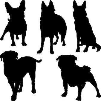 Silhouettes of different breeds of dogs in various poses