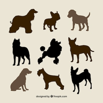 Silhouettes of dog breeds