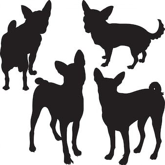 Silhouettes of dogs in the rack