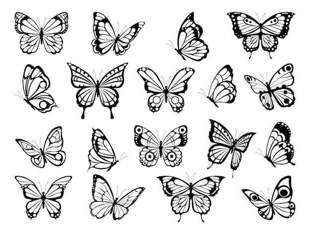 Силуэты бабочек. черные картинки веселых бабочек