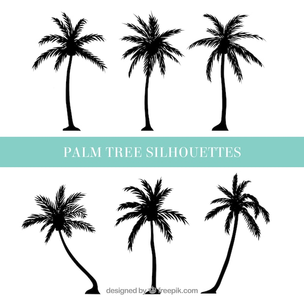palm tree vectors photos and psd files free download rh freepik com vector palm trees png vector palm tree silhouette