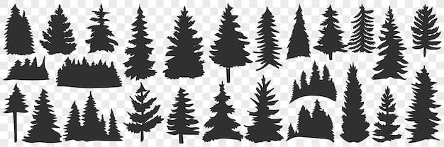 가문비 나무와 소나무 낙서 세트의 실루엣