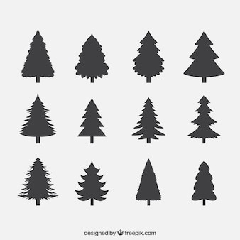 Silhouettes of pines collection