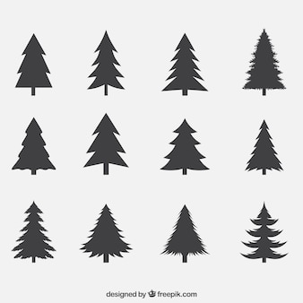 Silhouettes of pines pack