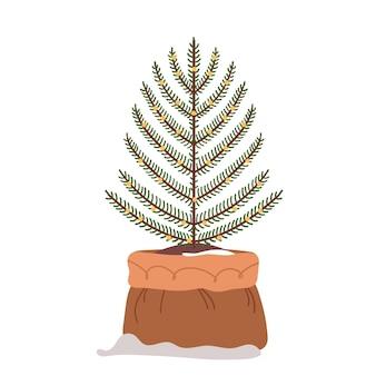 Простая рождественская елка, изолированная на белом