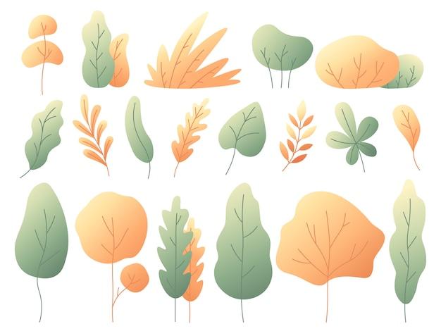Simple colorful autumn leaves set