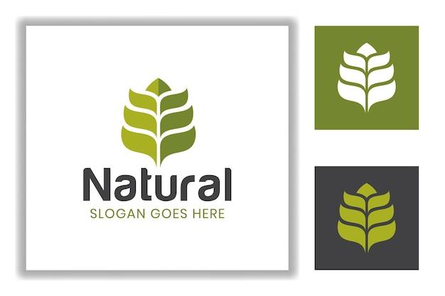 シンプルなデザインの緑の自然の葉または農家のための葉と小麦、農業のロゴのテンプレート