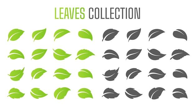 간단한 평면 녹색 잎 디자인 벡터 천연 제품을 사용하여 산림 보존의 개념