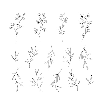 Simple hand drawn decorative leaves