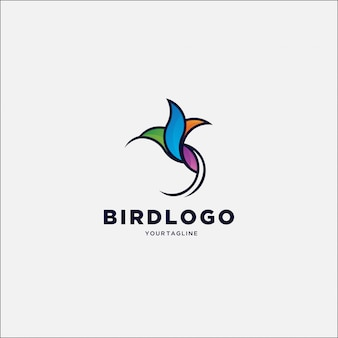 Simple hummingbird colorful logo