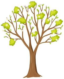 白い背景の上のシンプルな木