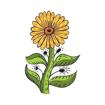 茎と葉のあるシンフラワーは、白い背景に分離されています。ヴィンテージスケッチ黄色い花。