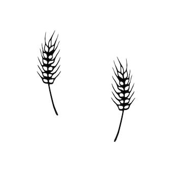 Одной рисованной пшеницы для осеннего украшения. каракули векторные иллюстрации. изолированные на белом фоне