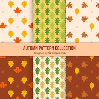 Six cute patterns for autumn