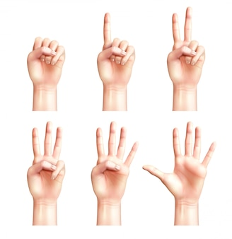 Six gestures of realistic people hands with fingers counting from zero to five isolated