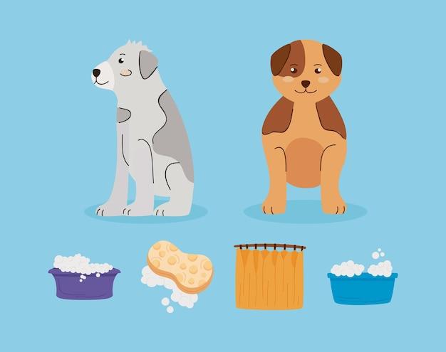 Шесть мыть животных набор иконок