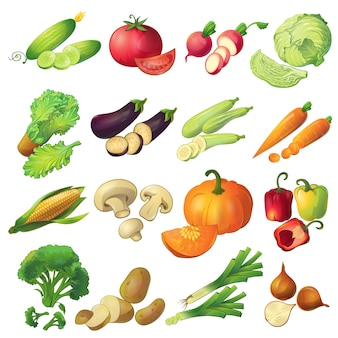 Sixteen isolated realistic cartoon ripe vegetable icons set colorful with slices