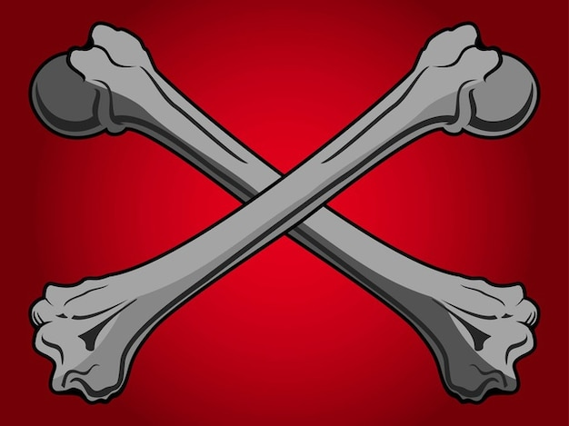 Skeleton bones pirate flag