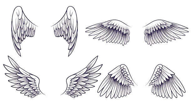 Sketch angel wings. hand drawn different wings with feathers. black bird wing silhouette for logo, tattoo or brand, isolated vintage vector set