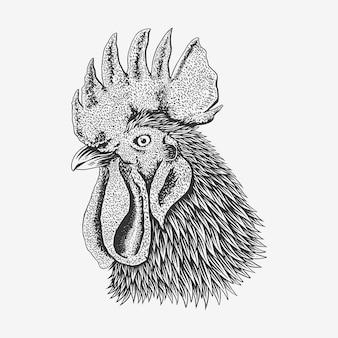 鉛筆で白い背景に分離された鶏の肖像画をスケッチします。手描きのオンドリの頭のベクトル図。