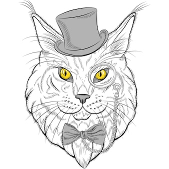 Sketch closeup portrait of funny maine coon cat hipster