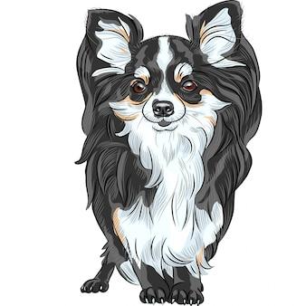 Эскиз собаки породы чихуахуа улыбается