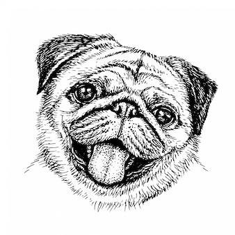 스케치 개. 귀여운 퍼그. 스케치 스타일에서 강아지의 초상화입니다. 손으로 그린 잉크 그림입니다.