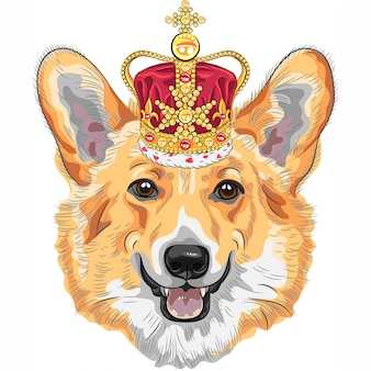 Sketch dog pembroke welsh corgi smiling in gold crown