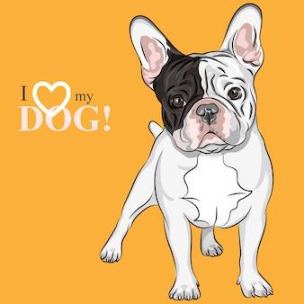 Эскиз домашней собаки породы французский бульдог