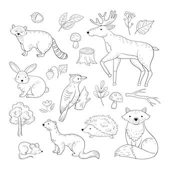 Эскиз лесных животных. лесной милый ребенок животное енот лось заяц дятел ежик куница лиса дети каракули рисованной набор