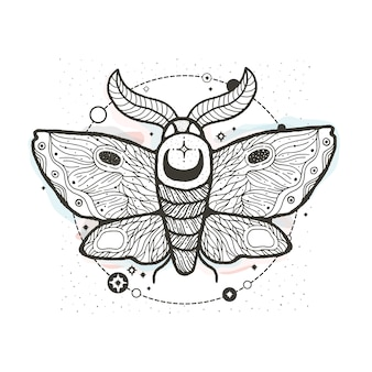 Sketch graphic illustration beautiful moth with mystic and occult hand drawn symbols.
