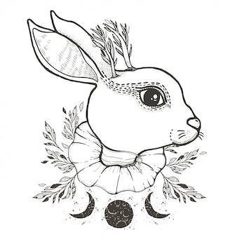 Sketch graphic illustration circus rabbit with mystic and occult hand drawn symbols.