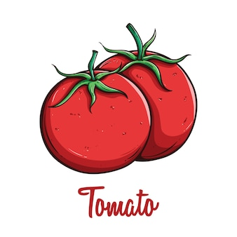 Sketch of healthy tomato organic vegetable food with text