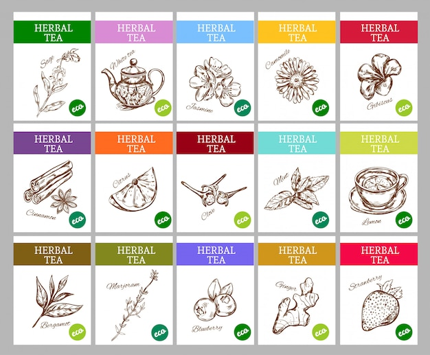 Collezione di etichette di tè alle erbe di schizzo