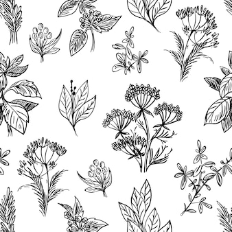 Sketch herbs and flowers seamless pattern