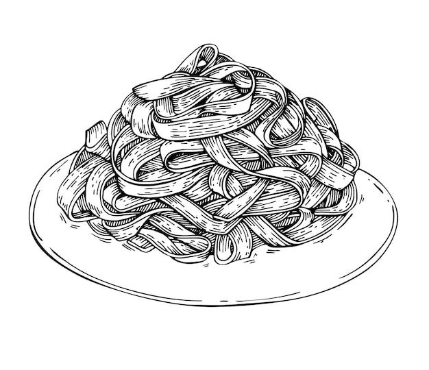 Sketch homemade italian fettuccine pasta on plate .