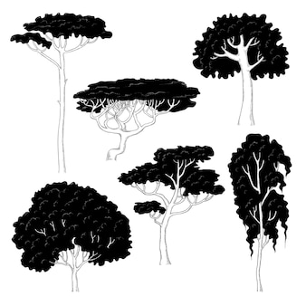 Эскиз иллюстрации черных силуэтов различных деревьев на белом фоне. сосна, береза, дуб, акация и другие виды растений.