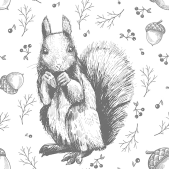 Sketch line art drawing of squirrel pattern
